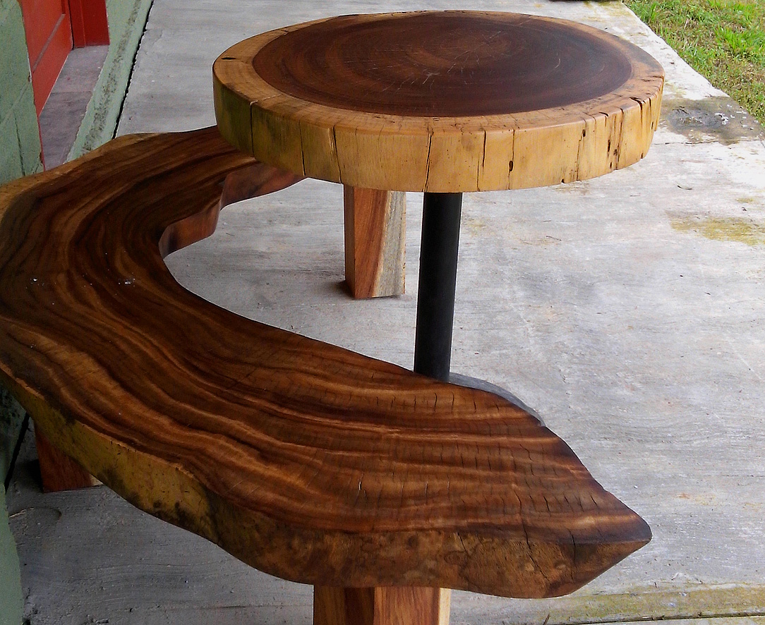 La parota un rbol con tradici n en m xico parotas for Mesas de troncos de arboles